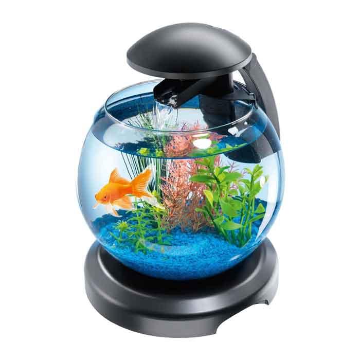 Akvarijum kugla za ribice
