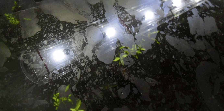 povrsinska skrama u akvarijumu